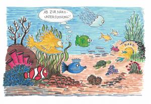Unterwasserwelt Folgeuntersuchung